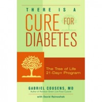 There Is A Cure For Diabetes by Dr Gabriel Cousens