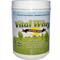 Vital Whey Cocoa