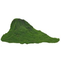 Superfoodies Organic Chlorella Powder
